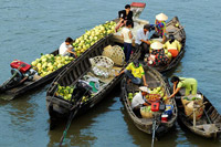 Mekong Delta Excursion & Daily Tours: Day trips Mekong Delta